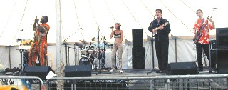 Photo of Dr. Bass playing soul music with Mandingo Dream at the Willow Festival, Peterborough